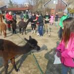 Děti pomáhají přírodě 2015, 11