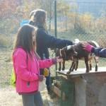 Děti pomáhají přírodě 2015, 6